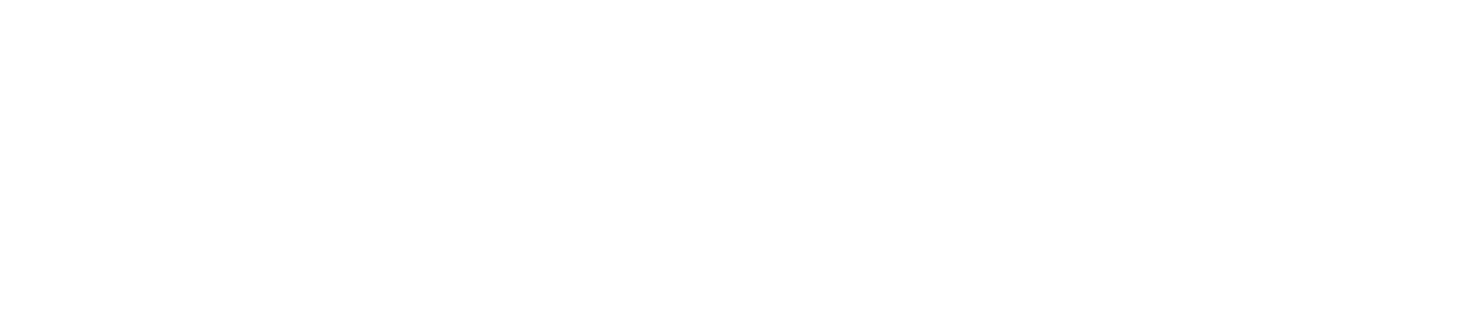 Diana Zwarthoed logo